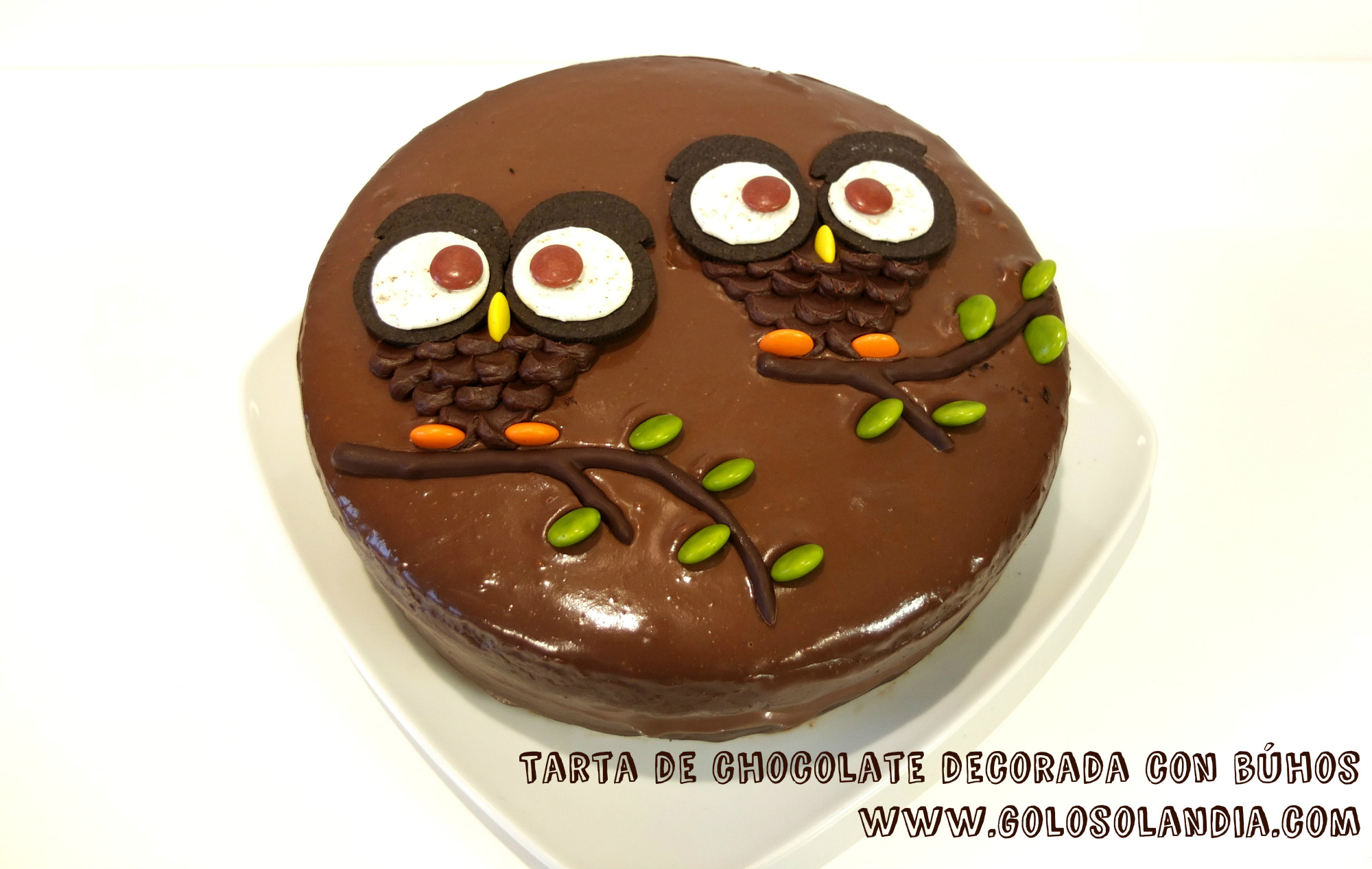 Tarta de chocolate decorada con búhos