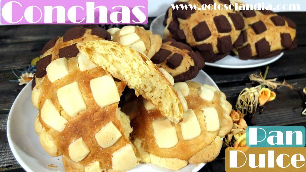 Conchas Mexicanas, pan dulce blancas y de chocolate